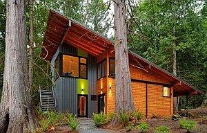 крутая односкатная крыша в окружении деревьев